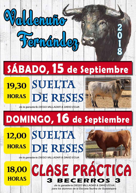 Fiestas 2018 01