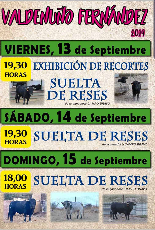 Fiestas 2019 01